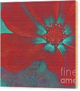 Petaline - T23b2 Wood Print