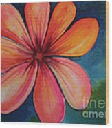 Petals Wood Print by Carolyn Weir