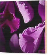 Petals Galore Wood Print