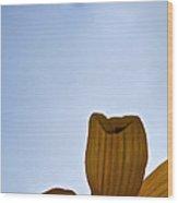 Petals Rising Wood Print