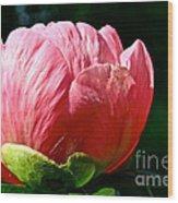 Petals Up Wood Print