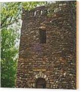 Petit Jean Water Tower 2 Wood Print