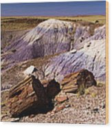 Petrified Logs In The Badlands Wood Print