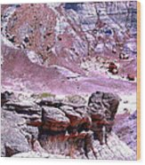 Petrified Wood In The Painted Desert Wood Print