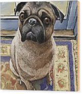 Hungry Pug Wood Print