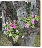 Petunia Tree Wood Print
