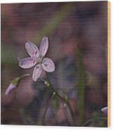 Peyton's Petals Wood Print