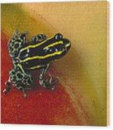 Phantasmal Poison Dart Frog Wood Print