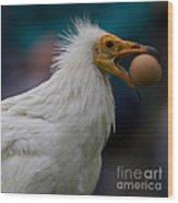 Pharaos Chicken  Wood Print
