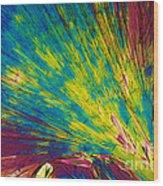 Phenylalanine Wood Print by Michael W. Davidson