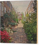 Philadelphia Courtyard - Symphony Of Springtime Gardens Wood Print by Mother Nature