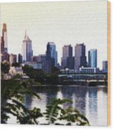 Philadelphia From The Banks Of The Schuylkill River Wood Print