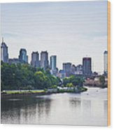 Philadelphia View From The Girard Avenue Bridge Wood Print