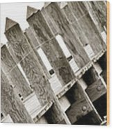 Phillies Dock Halladay Wood Print by Trish Tritz