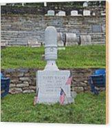 Phillies Harry Kalas' Grave Wood Print