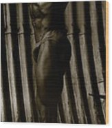 Photo 1 Wood Print