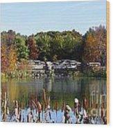 Photo Watercolour Lincoln Woods Ri Wood Print