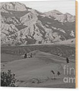 Photographers Capturing Images Of The Dunes At Death Valley  Wood Print