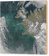 Phytoplankton Bloom In The North Wood Print by Stocktrek Images