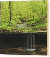 Pickle Spring In Missouri Wood Print
