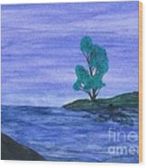 Picnic On The Point Wood Print by Robert Meszaros