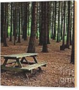 Picnic Table Wood Print by Carlos Caetano