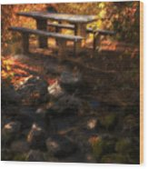 Picnic Table Wood Print by Utah Images