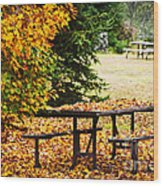 Picnic Table With Autumn Leaves Wood Print by Elena Elisseeva