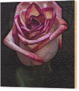 Picturesque Satin Rose Wood Print