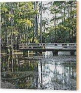 Pier In The Swamp Wood Print