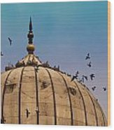 Pigeons Around Dome Of The Jama Masjid In Delhi In India Wood Print
