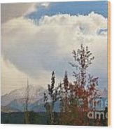 Pikes Peak View Wood Print