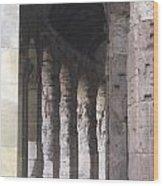 Pilars In Rome Wood Print