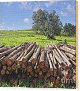 Pile Of Trunks Wood Print