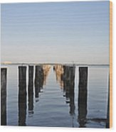 Pilings From An Old Pier Wood Print