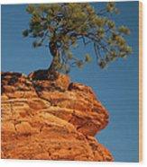 Pine On Rock Wood Print