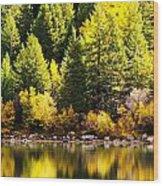 Pine Reflection At Georgetown Lake Colorado Wood Print