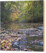Pine River In Fall Wood Print