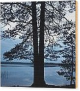 Pine Silhuette Wood Print