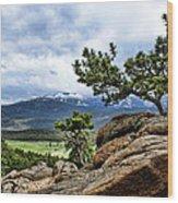 Pine Tree And Mountains Wood Print