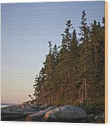 Pine Trees Along The Rocky Coastline Wood Print by Hannele Lahti