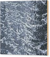 Pine Trees Covered In Snow, Les Arcs Wood Print
