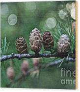 Pinecone Party Line Wood Print