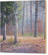 Pinewoods Wood Print