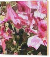 Pink Alstroemeria  Wood Print