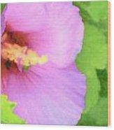 Pink Althea Wood Print by Wide Awake Arts
