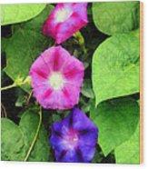 Pink And Purple Morning Glories Wood Print