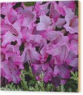 Pink Azalea Wood Print