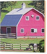Pink Barn In The Summer Wood Print
