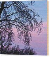Pink Blue Sky Wood Print